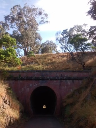 Yea, Australia: Cheviot Tunnel