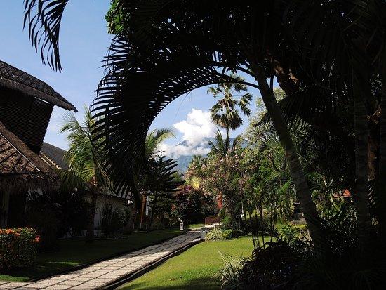Siddhartha Ocean Front Resort & Spa: photo0.jpg