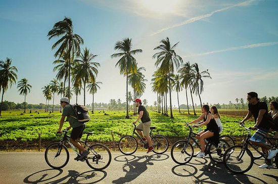 Tropical Bike Adventure