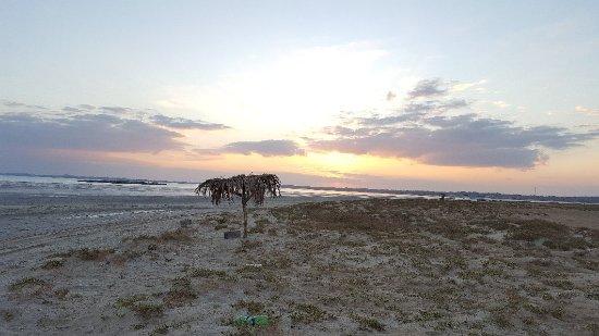 Masirah Island, Umman: 20171122_062706_large.jpg