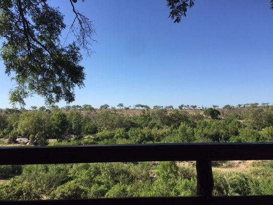 Londolozi Private Game Reserve, Sudáfrica: View from Main Lodge Deck