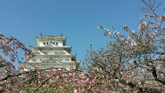 How to take a day trip to himeji castle #travel #castle #japan.