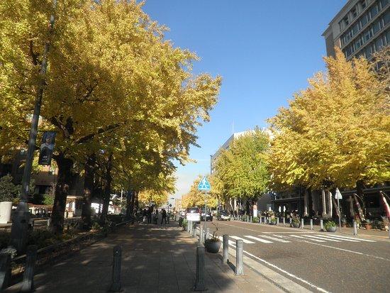 Nihon Odori Street