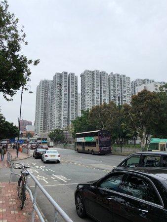 Sha Tin Park: photo3.jpg