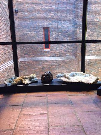 Tullie House Museum & Art Gallery: photo2.jpg