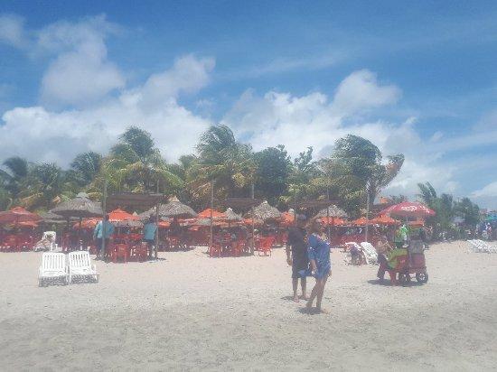 State of Alagoas: 20171123_102143_large.jpg