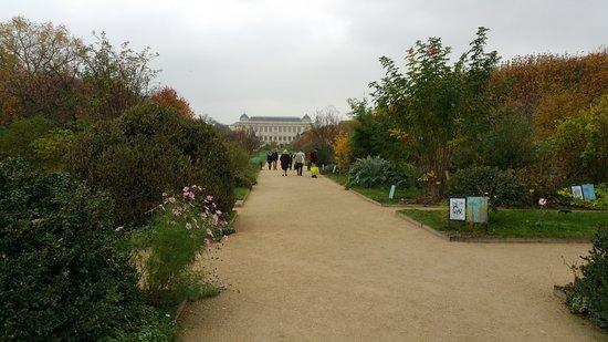 Jardin des plantes paris 2017 ce qu 39 il faut savoir pour votre visite tripadvisor - Jardin des plantes paris horaires ...