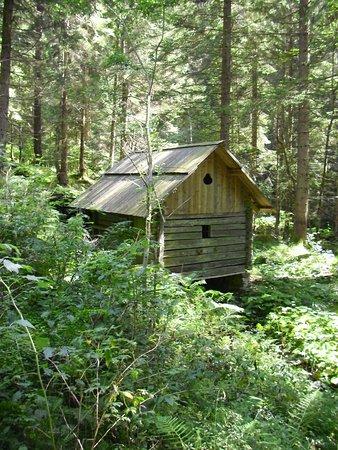 Dobriach, Österrike: mulino2