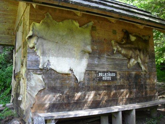 Dobriach, Österrike: pelli