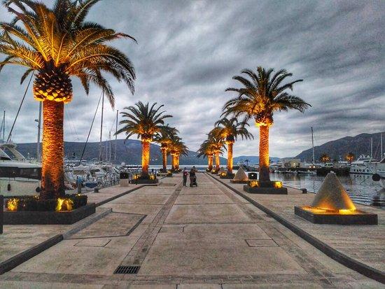 Tivat, Montenegro: P_20171112_162959-01_large.jpg