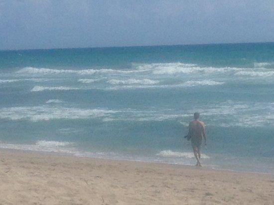 Fort Pierce, FL: Walton Rocks is a dog friendly beach.  Restaurants are close by.