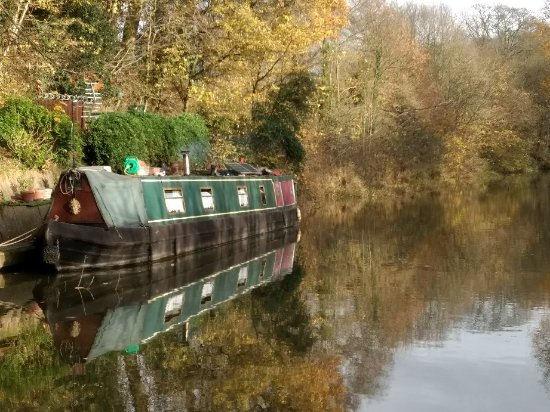 Hatton, UK: IMG_20171125_123630262_large.jpg