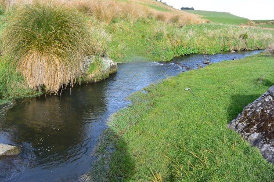 Southland Region, New Zealand: Small streams are my favourite