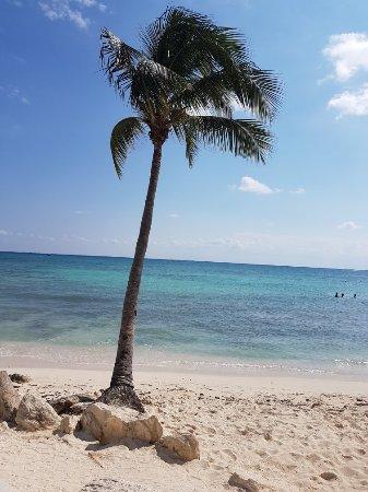 Mahekal Beach Resort: 20171108_134051_large.jpg