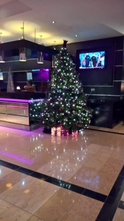 Crowne Plaza Hotel Dublin Airport: Reception