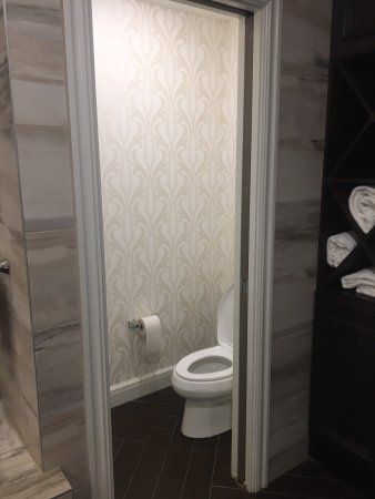 Depew, NY: Harriet Suite bathroom: water closet
