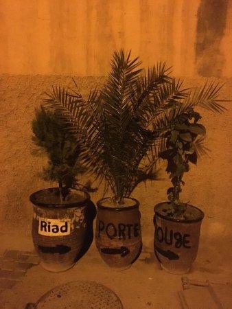 Riad La Porte Rouge: photo1.jpg
