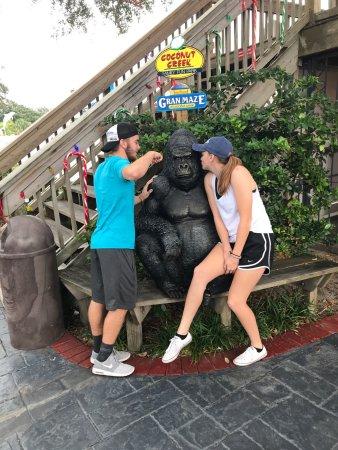 Coconut Creek Family Fun Park: photo2.jpg