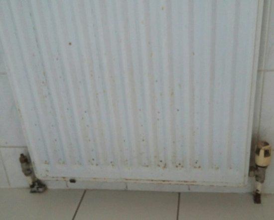 Radiator Voor Toilet : Elegante badkamer gerenoveerd in vlijmen met radiator zeist