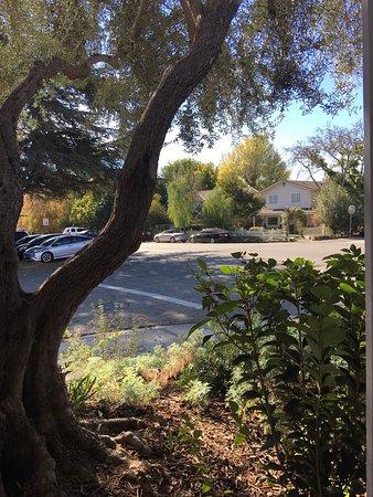 Los Olivos, Californien: photo4.jpg