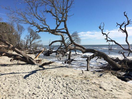 Isle of Palms, Karolina Południowa: photo2.jpg