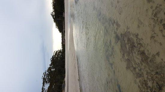 Huskisson, Australia: 20171123_184506_large.jpg