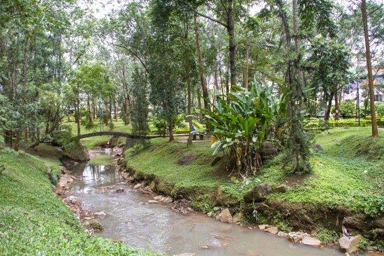 Bois Sainte Anastasie: Un giardino ordinato in mezzo a una città che non ha niente di ordinato