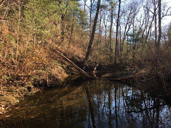 Winchester, VA: photo2.jpg