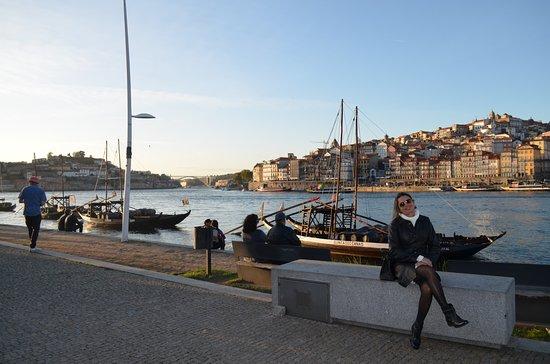 Sandeman Cellars: Caves Sandeman - local onde são engarrafos e distribuidos o Vinho do Porto em Portugal.