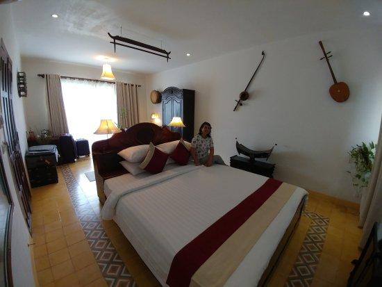 Dandrei suite