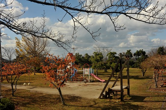 Daisen-cho, Япония: 高台から日本海を望む公園