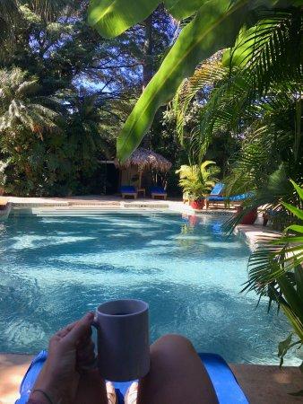 Hotel Pasatiempo: Pool oasis