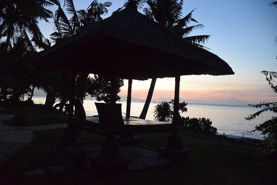 Puri Bali Hotel 사진
