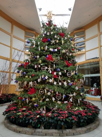 Cleveland botanical garden oh top tips before you go with photos updated 2017 tripadvisor for Cleveland botanical gardens parking