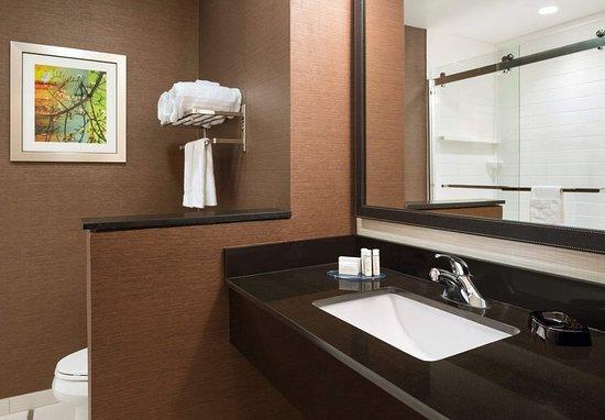 Bristol, TN: King Guest Room - Walk-In Shower