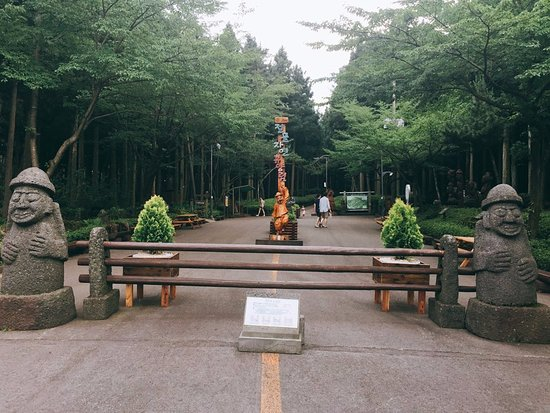 Jeolmul Natural Forest Resort: 입구 모습