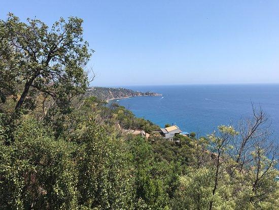 Santa Cristina d'Aro, Spanien: Leuke rustige camping. Grote percelen en fijn zwembad. Douche gebouwen zijn simpel maar worden 2