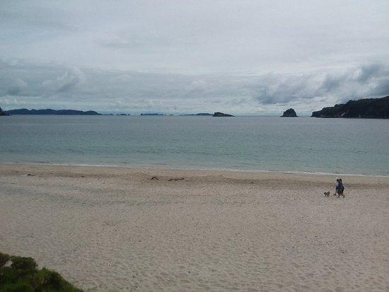 Whangamata, Новая Зеландия: 20171125_221036_large.jpg