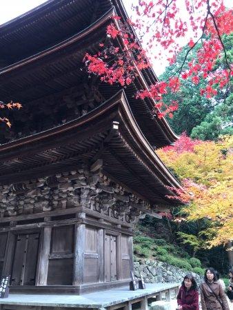 Kora-cho, Japan: photo0.jpg
