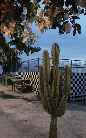 L'Auberge Restaurant: photo0.jpg