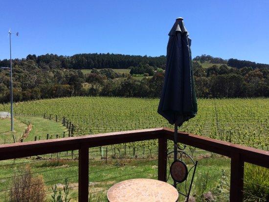 picture of gisborne peak winery cottages. Black Bedroom Furniture Sets. Home Design Ideas