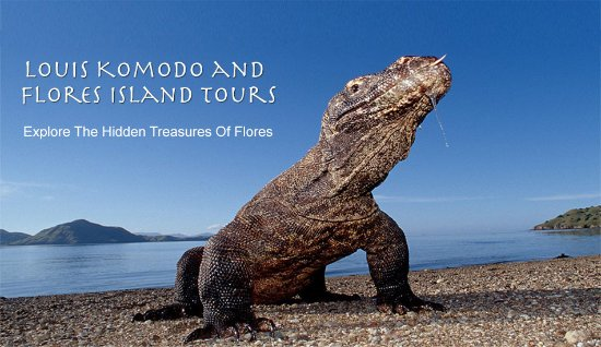 Komodo National Park, อินโดนีเซีย: Louis Komodo and Flores Island Tours