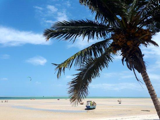 Vilanculos, Mozambique: Kiten bei Ebbe