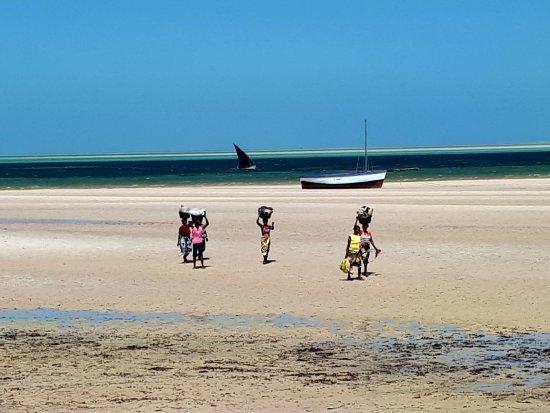VilanCool Water Sports: Afrika Pur