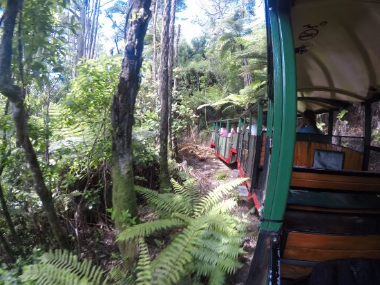Coromandel, Yeni Zelanda: Ride with the train