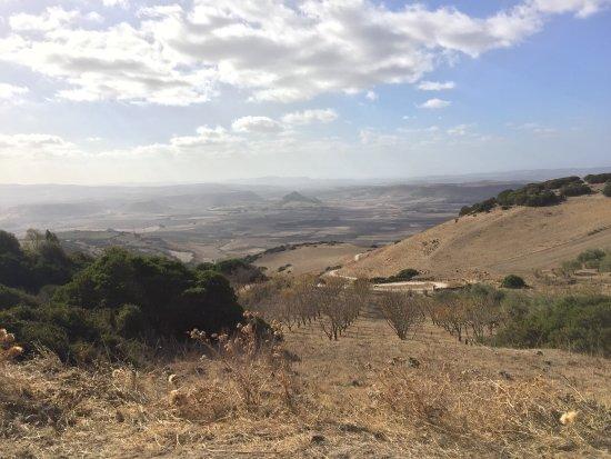 Parco della Giara Tuili: Parco della Giara fantastico grazie Roberto per la bellissima escursione