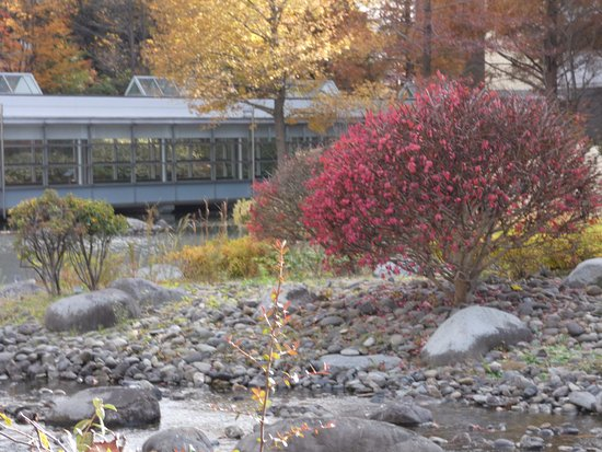 Moriya, Japan: 園内紅葉がきれいでした