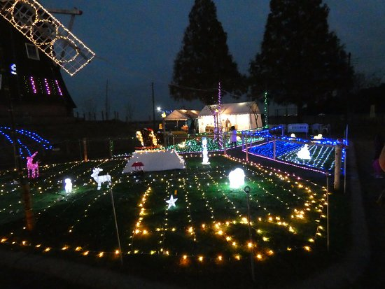 Akebonoyama Agricultural Park: イルミネーション