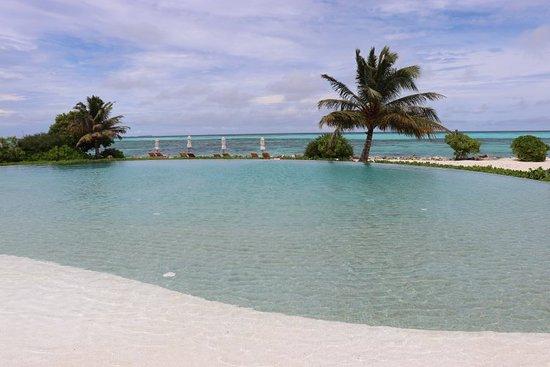 Dhidhoofinolhu Island: IMG_0838_large.jpg