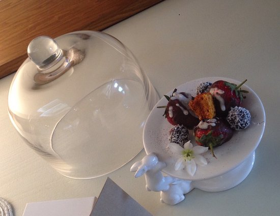The Robertson Small Hotel: Do read my review of this magnificent hotel - do not miss out!